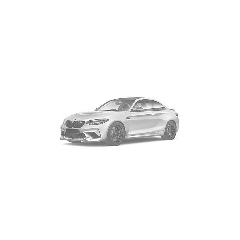 MINICHAMPS BMW M2 CS 2020 BLUE (%)